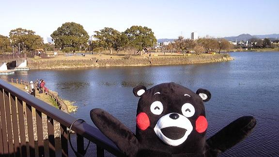 くまモン江津湖1