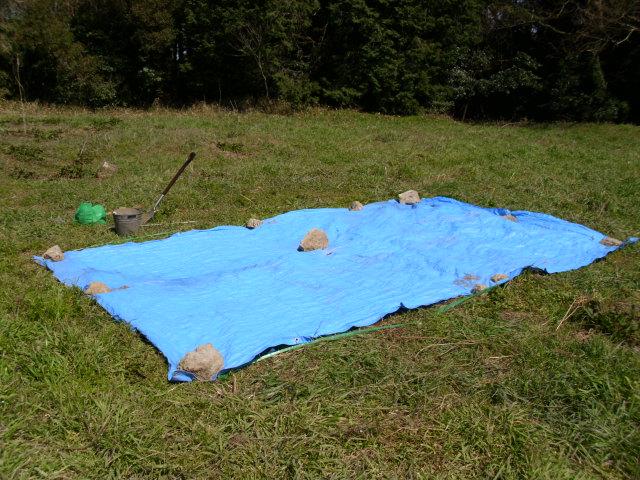 エビヅル播種後の畑201204072