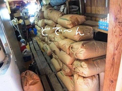 米たくさん.jpg