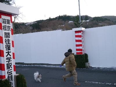 2013箱根11.JPG