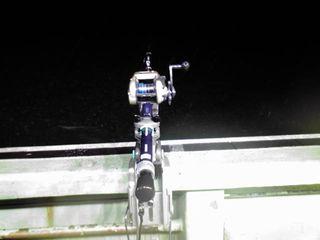電機釣り.jpg