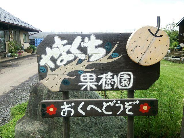 山口02.JPG