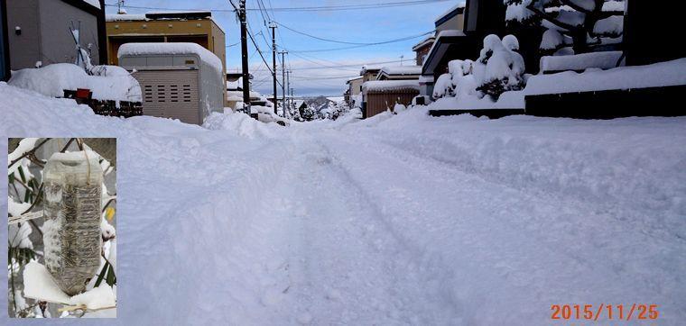 11/25除雪が入らない.jpg