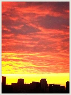 LINEcamera_share_2014-01-16-13-34-27.jpg