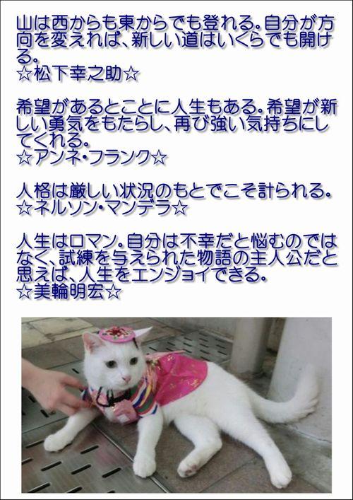 001今日の名言2015.8.20.JPG