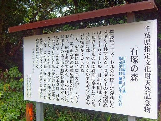 石塚の森.jpg