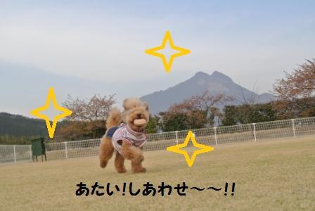 到着後のラン (18).JPG