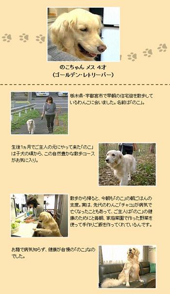 2013.11.19-4.jpg