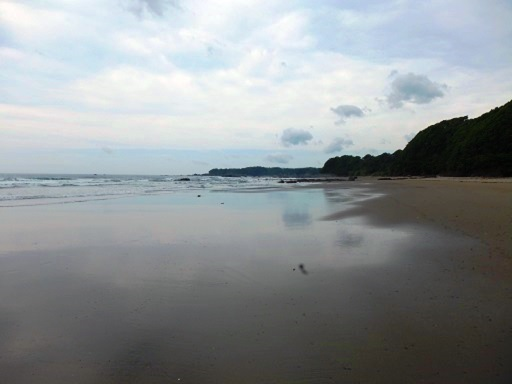 海へ.jpg