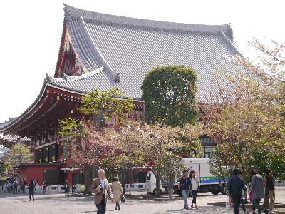 2012浅草4月3.JPG