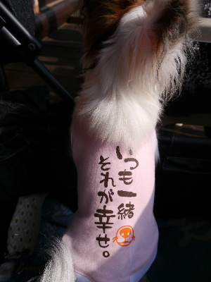 2012船橋8.JPG