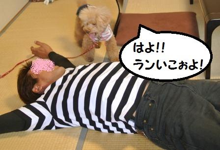 部屋到着のノア珀空 (12).JPG