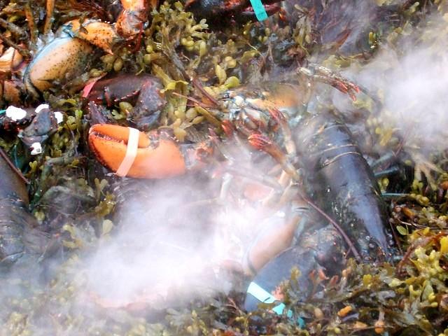 +0325 BBBQ lobster01.jpg