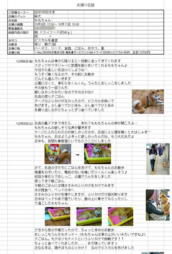 2012.6.14-3.jpg
