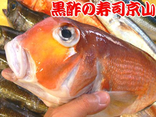 江東区 寿司 出前 千田