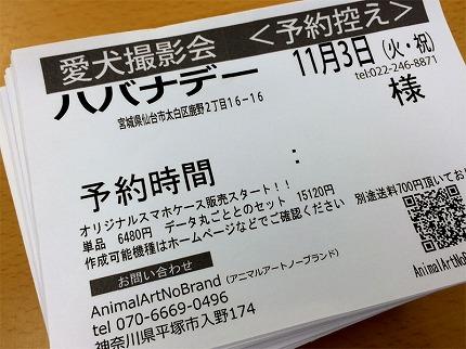 2015.9.9-2.jpg
