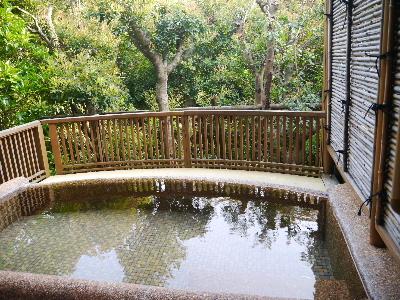 2012伊豆旅行5月2-7.JPG