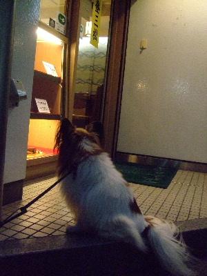 20121月お花教室14.JPG