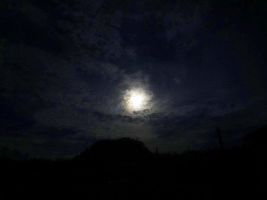 明るい月夜だった.jpg