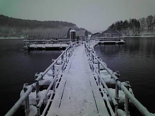 行きの桟橋.jpg