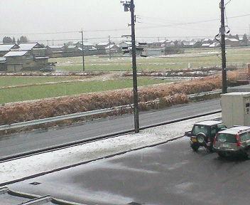 小雪がちらちら.jpg
