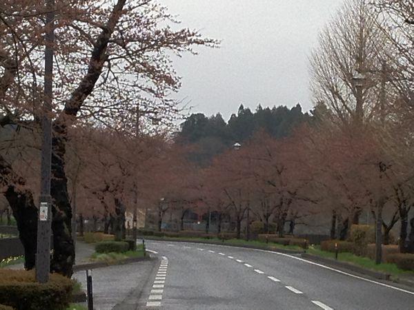 20120423平泉