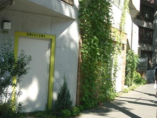 壁面緑化2006コルぴ500.jpg