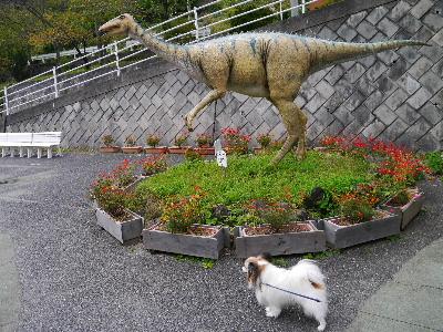 2012三波石峡17.JPG