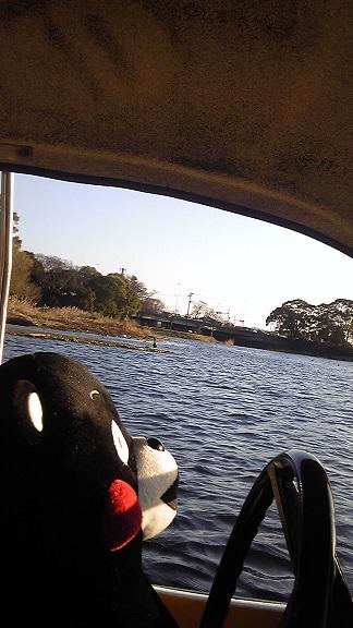 くまモン江津湖10