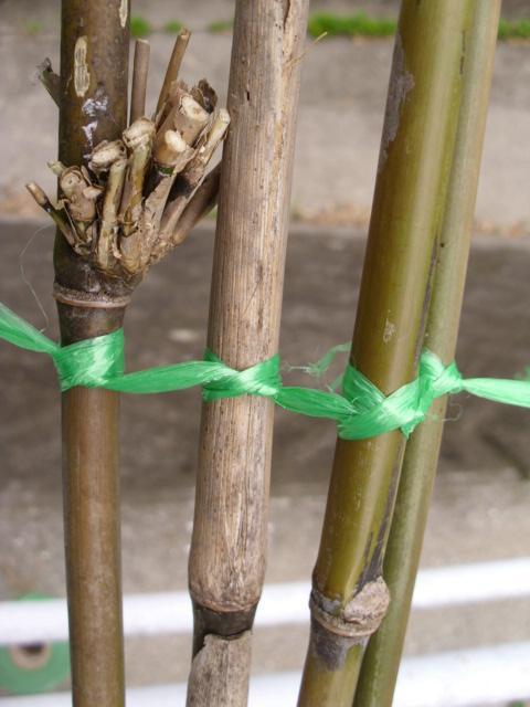 支柱作り20120604