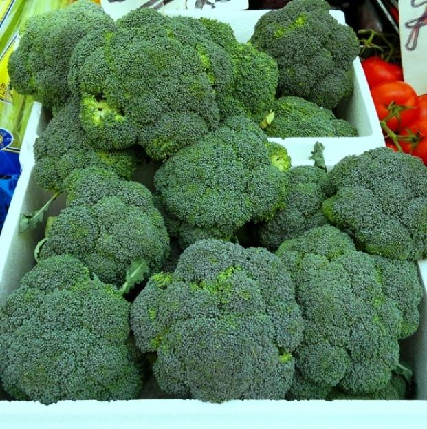 +0226 broccoli.jpg