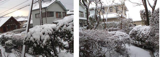 鹿児島の大雪