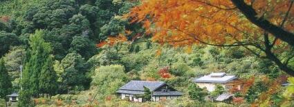 2013-11-shinonome
