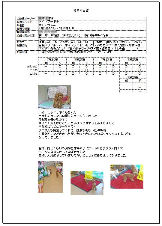 2014.7.29-7.jpg
