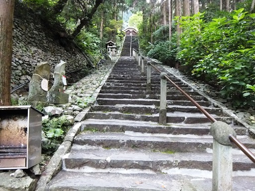 激しい階段が.jpg