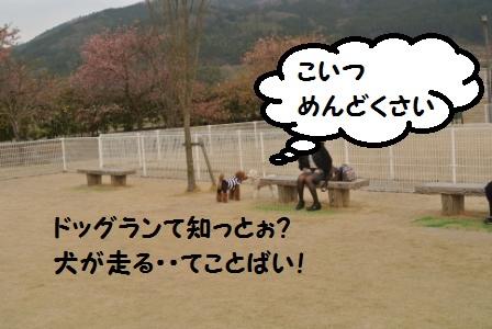 到着後のラン (102).JPG