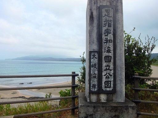 大岐海岸.jpg
