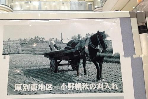 厚別歴史写真パネル展