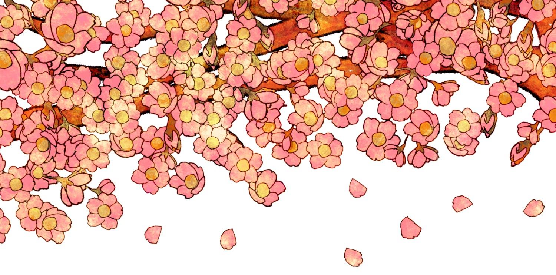 和風の桜の花びらの背景もフリー無料素材の画像をダウンロード | 無料