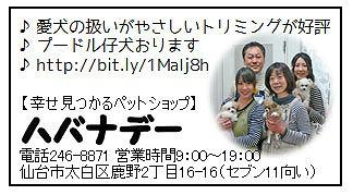 2015.9.16-4.jpg