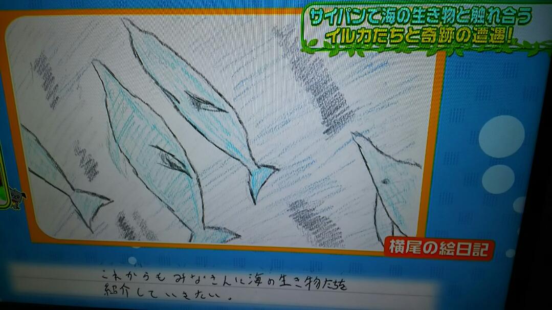 横尾渉 サイパン イルカ