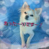 rblog-20130627160139-01.png
