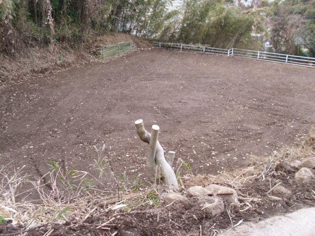 小さな畑20120209