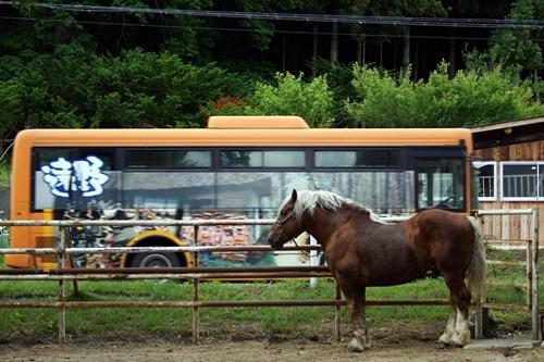 馬とバス-遠野