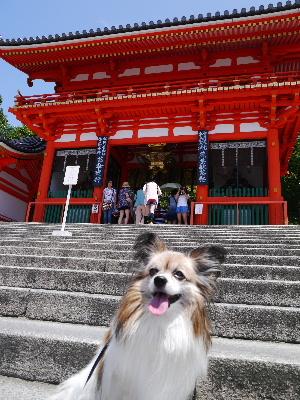 2012京都夏1−9.JPG
