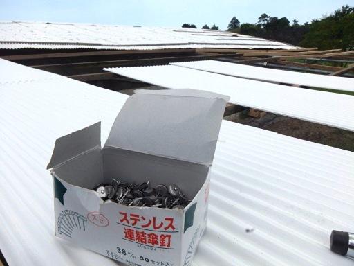 屋根とんとん.jpg