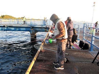施設 釣り 本牧 海