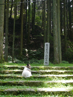 2012京都夏2−25.JPG