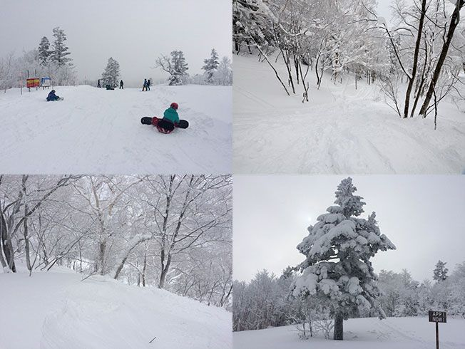 カメラ 安比 高原 スキー 場 ライブ