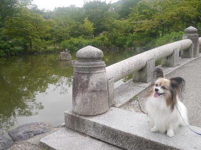 2012京都夏2−3.JPG